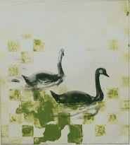 Alexandra Kern - The Swans