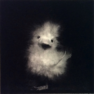 Janne Laine - Fluffy IV