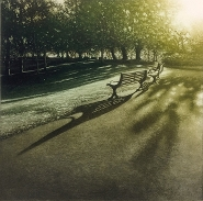 Anja Percival - Park light II