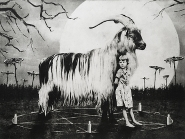 Jaco Putker - The girl and the goat